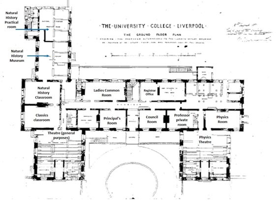 Waterhouse's converted asylum plan for the ground floor shows how University College Liverpool would use the old building.