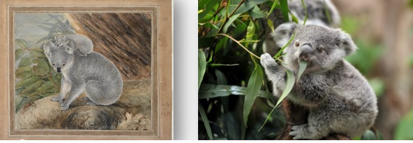 Comparison between 1803 watercolour and 21st century photograph