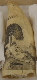 A walrus tusk engraved with an image depicting a lady beneath a tree representing longing and fidelity