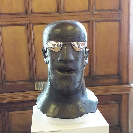 Shiny goggles again