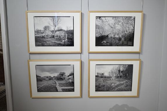 Allotments Exhibition Photograph by David Lockwood