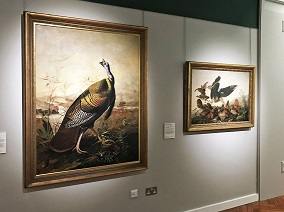 The Audubon Gallery with paintings of birds and American wildlife