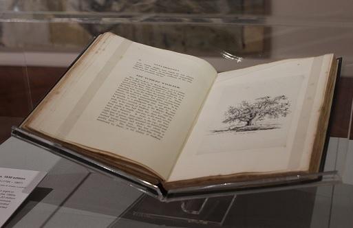 Sylva Britannica, 1830 edition By Jacob George Strutt (1784 – 1867)