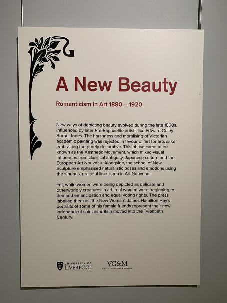 A New Beauty Introductory Panel